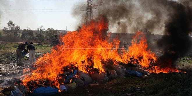 Tan-Tan: Plus de 16 tonnes de drogue incinérées