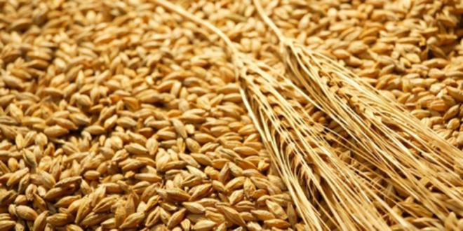 Céréales : Gromic importera 30.000 tonnes