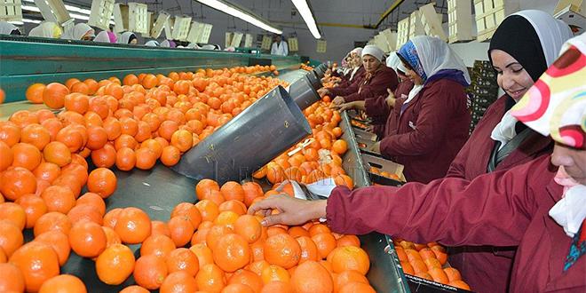 Agriculture: CAM sonde les fédérations interprofessionnelles