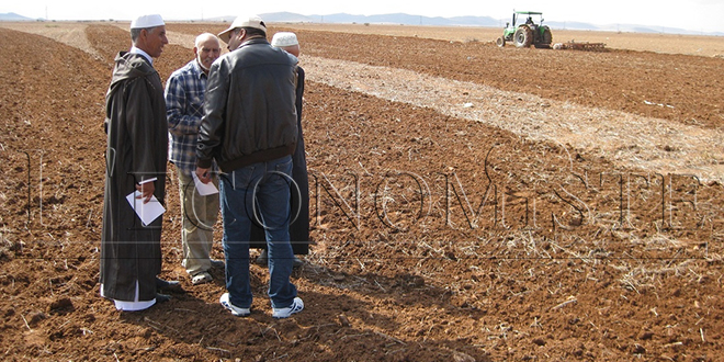 Les conseillers agricoles lancent leur fédération