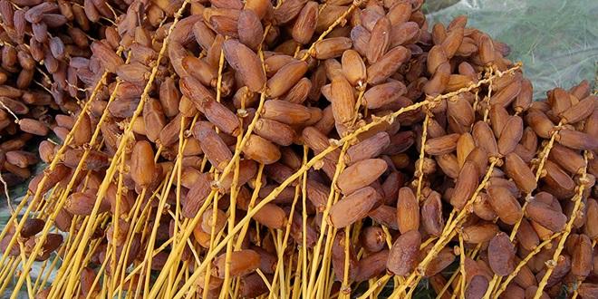 Guelmim : Ouverture de la Foire régionale des dattes de Taghjijt