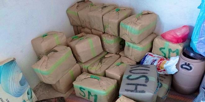 Tan-Tan: 6,5 tonnes de drogue et des armes à feu saisies