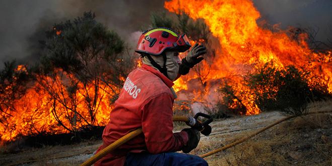 Incendies de forêt : Dégâts record au Portugal