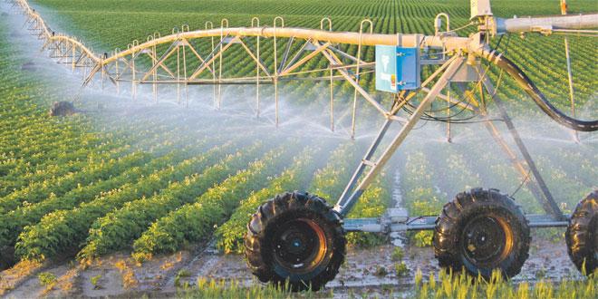 Agriculture: La valeur ajoutée prévisionnelle à 130 MMDH en 2021
