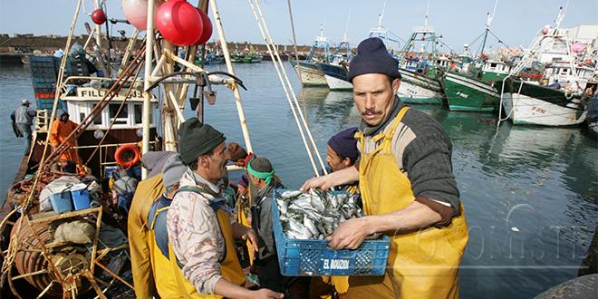 Pêche: La valeur des prises en baisse