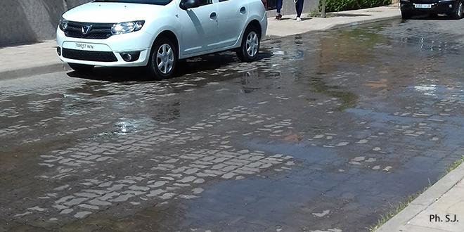 Marrakech : Quand l'irrigation arrose la route, pas le jardin...