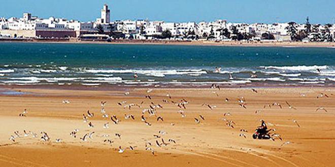Découverte à la plage d'Essaouira des débris d'une embarcation archéologique