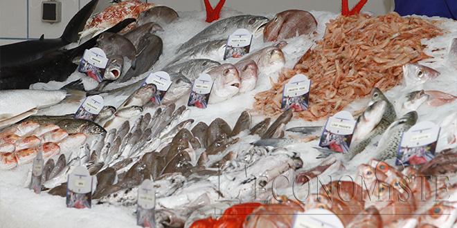 Ouverture du nouveau marché de gros au poisson à Tamesna
