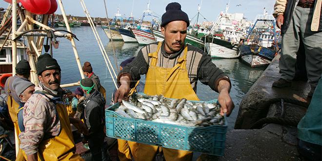 Pêche: Les prises bondissent de 9%