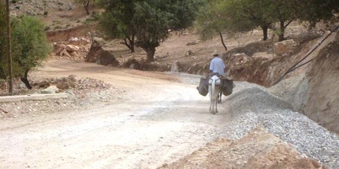 Monde rural : Tanger-Tétouan-Al Hoceima lutte contre l'exclusion