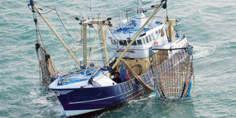 Accord de pêche Maroc-UE: 100.000 tonnes contre 52,2 millions d'euros