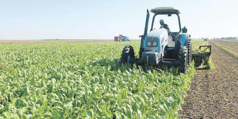 Le Conseil agricole privé opérationnel