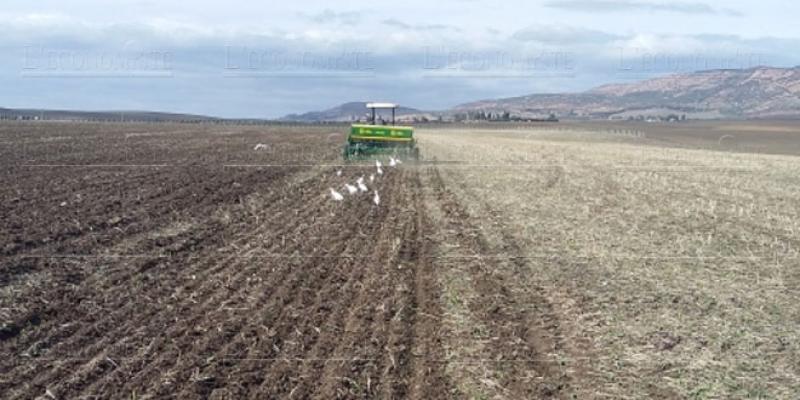 OCP: Une caravane pour une agriculture raisonnée en Ethiopie