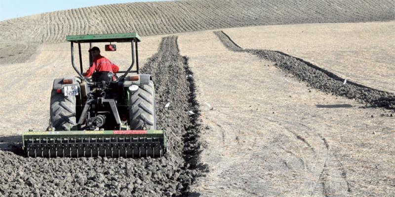 Agriculture: Tout est prêt, il reste une bonne pluviométrie