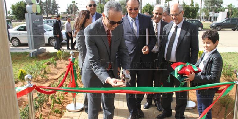 Parc Ain Johra : Lancement de l'aménagement de la 2e tranche