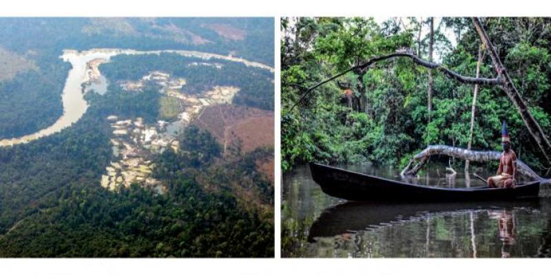 La forêt amazonienne en train de devenir source de CO2