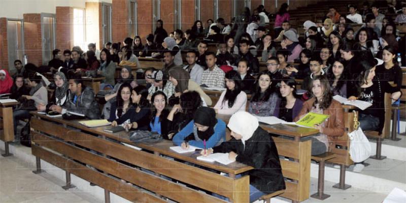 Des bureaux pour rapprocher l'AMO des étudiants
