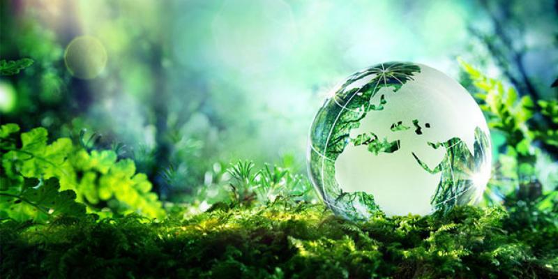 Les cités universitaires veulent devenir écolo