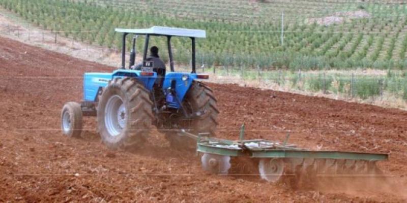 Campagne agricole: Sur une bonne trajectoire