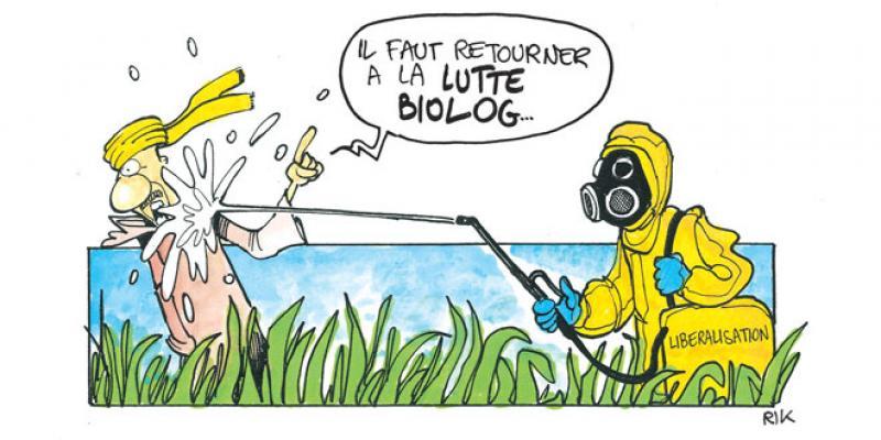 Pesticides: Enfin l'ébauche d'une stratégie se dessine