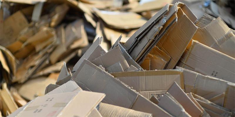 Papier/Carton/Déchets: Le contingent à l'export fixé à 20.000 tonnes