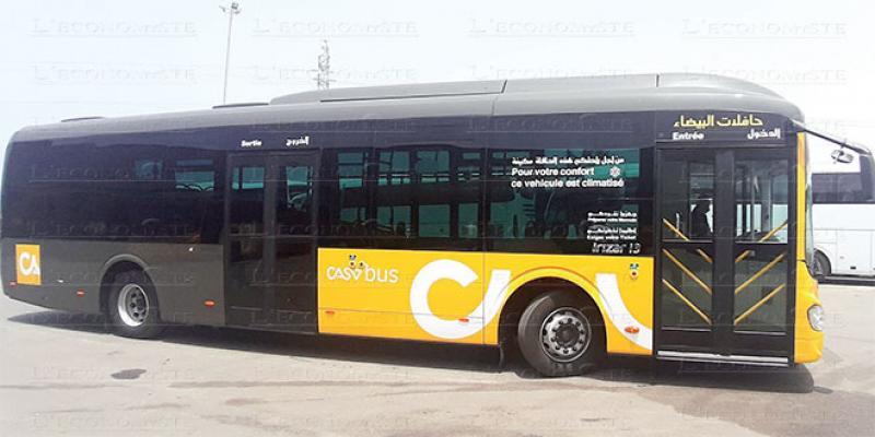 Casablanca: Les nouveaux bus débarquent