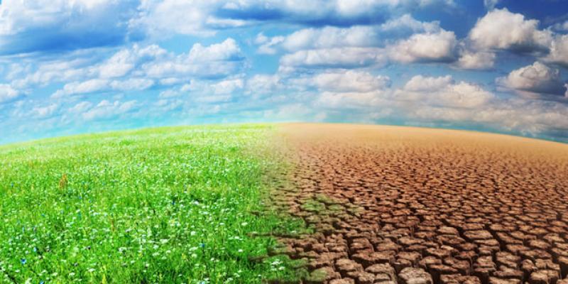 Changement climatique: Lancement d'un processus de restructuration