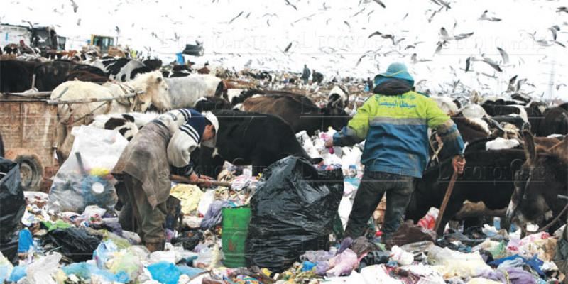 Gestion des ordures: Mesures radicales à Casablanca