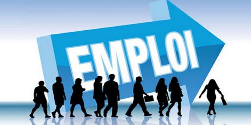 Employabilité: La CGEM s'attaque à l'inadéquation formation/emploi