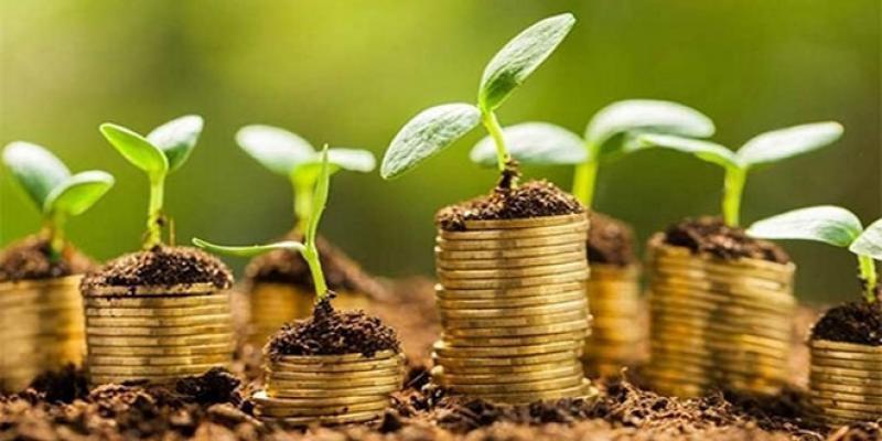 Un appui conséquent pour l'entrepreneuriat vert