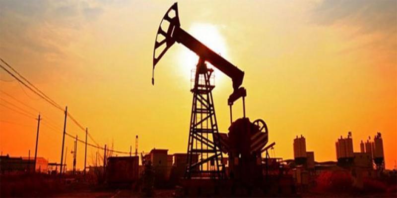 Exploration pétrolière: Le britannique Predator Gas entre dans la course