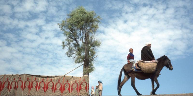 Exposition: Le Maroc vu par Daoud Aoulad-Syad