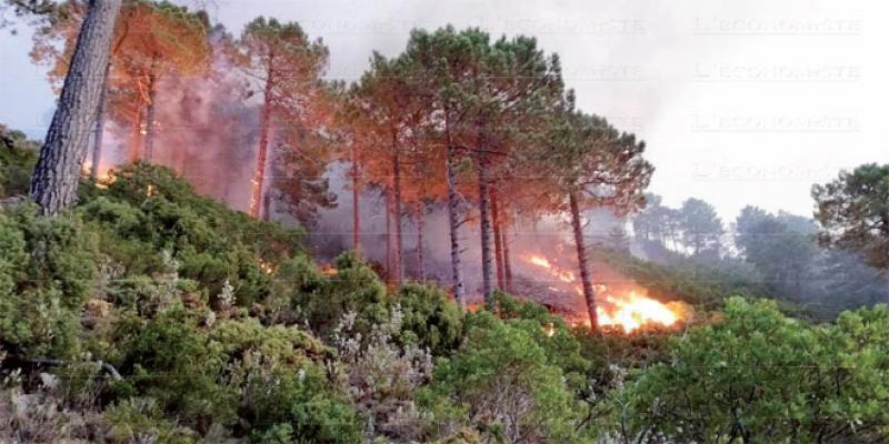 Oriental: Ces incendies qui menacent la saison estivale