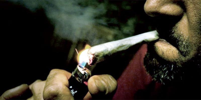 Enquête L'Economiste-Sunergia: Cachez-moi ce fumeur de cannabis que je ne saurais voir!