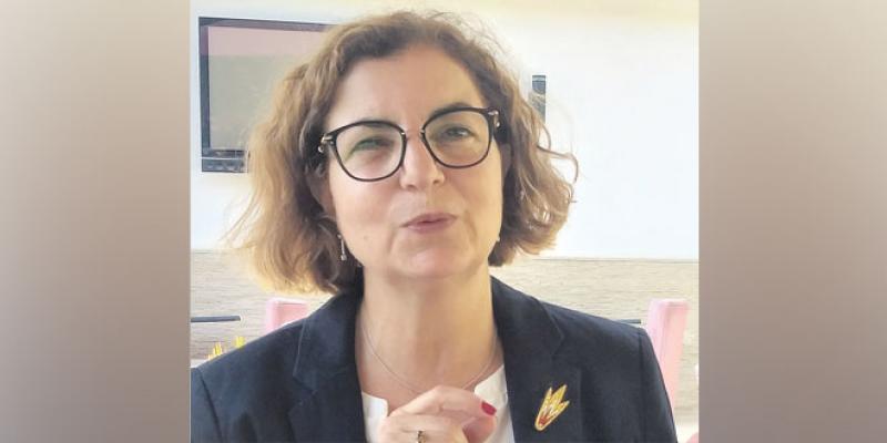 Météorites du Maroc: Ce qu'elles nous racontent sur l'origine de la vie