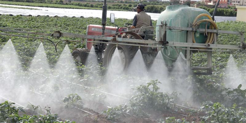 Monde rural: Priorité à la classe moyenne agricole