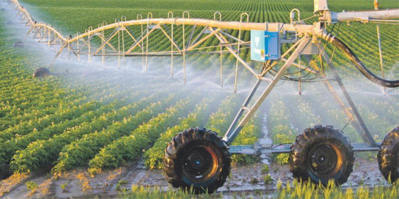 Agriculture: L'urgence de l'adaptation au changement climatique