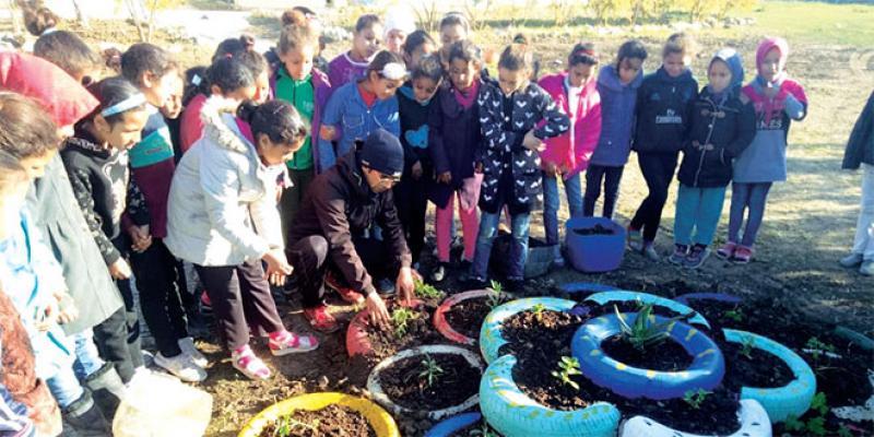 Un programme pour éduquer les jeunes par l'écologie