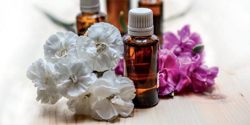 Dossier Marrakech - L'industrie des plantes aromatiques et médicinales se confirme