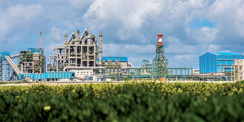 Dossier El Jadida: L'OCP, locomotive de l'écosystème industriel
