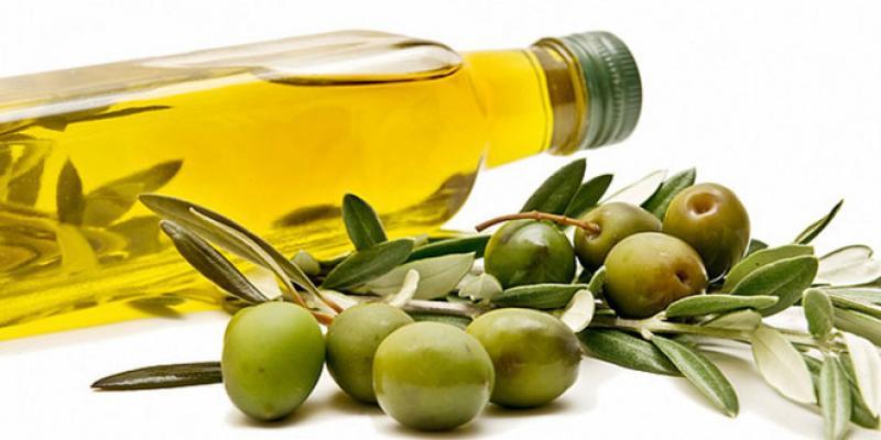 Oléiculture: L'huile d'olive peu valorisée à l'export