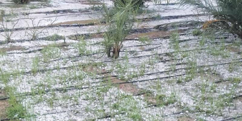 Oriental: La pluie met à nu la fragilité des infrastructures