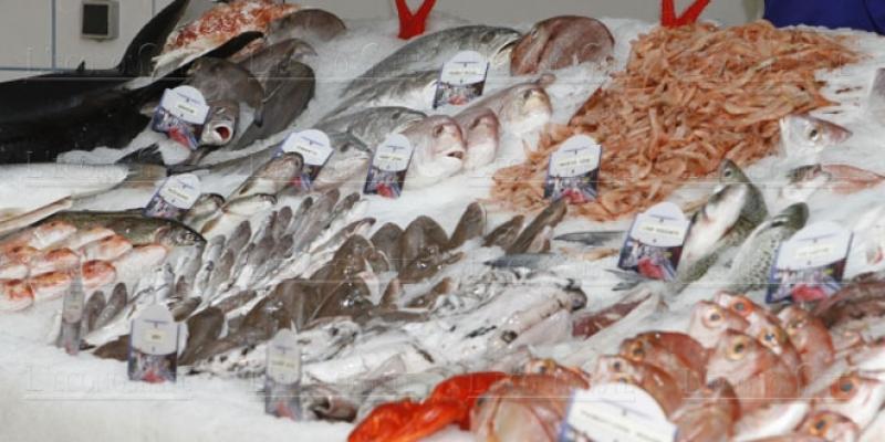 Pourquoi le poisson est si cher!