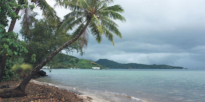 Polynésie: Les touristes de retour