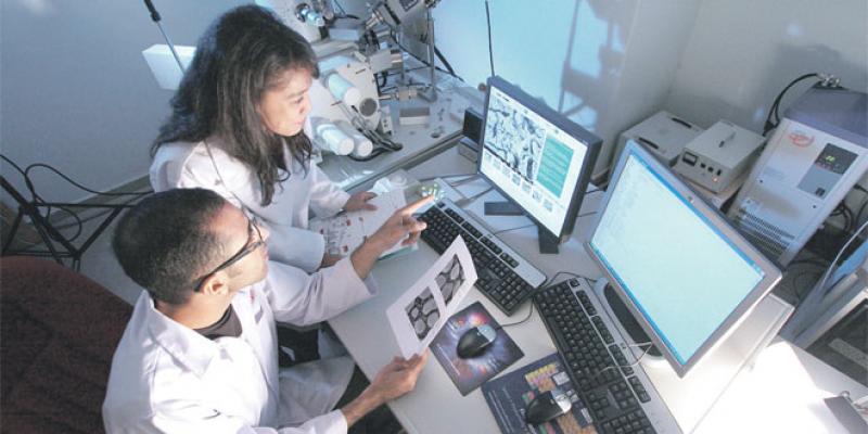 R&D: Ce que proposent les X-Maroc