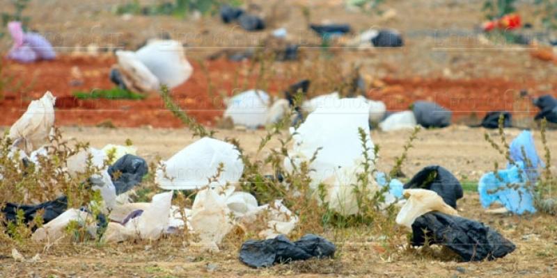 Le casse-tête des sacs en plastique