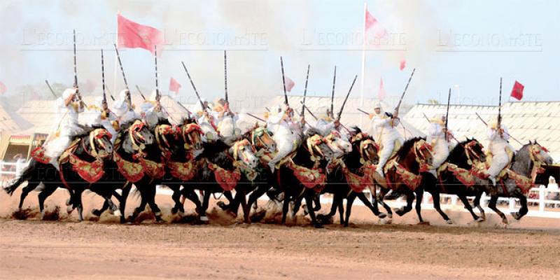 Salon du cheval d'El Jadida: Faut-il revoir la formule?