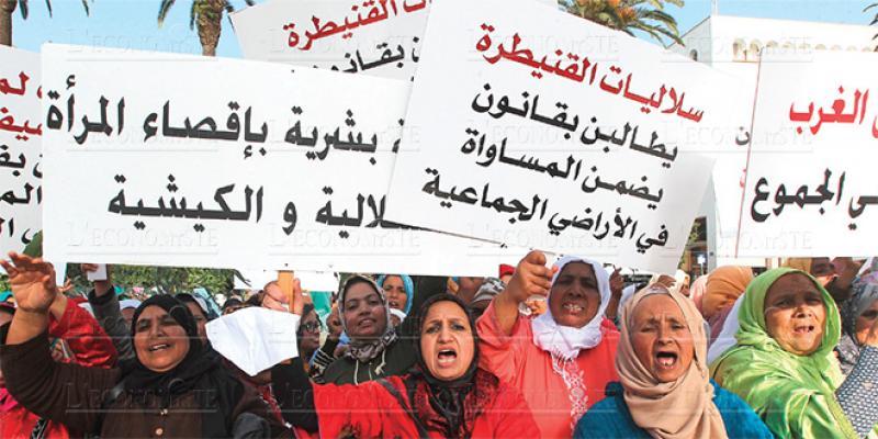 Soulaliyates: Les ONG veulent peser sur les discussions