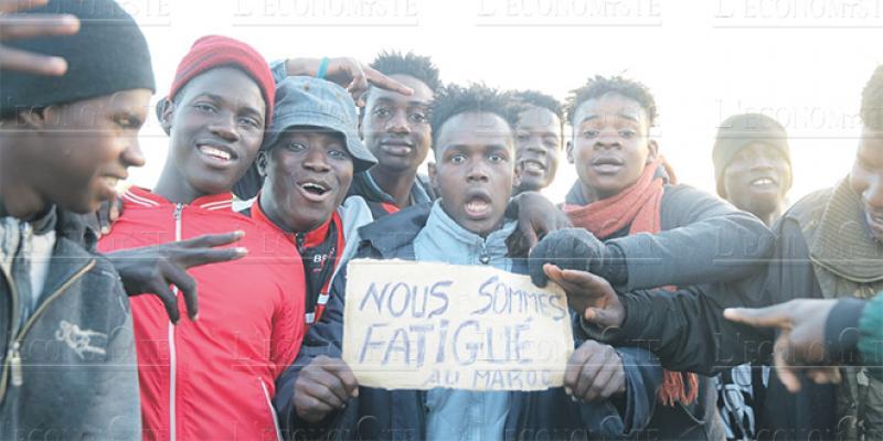 Enquête L'Economiste-Sunergia/ Migrants subsahariens:Des résultats surprenants!