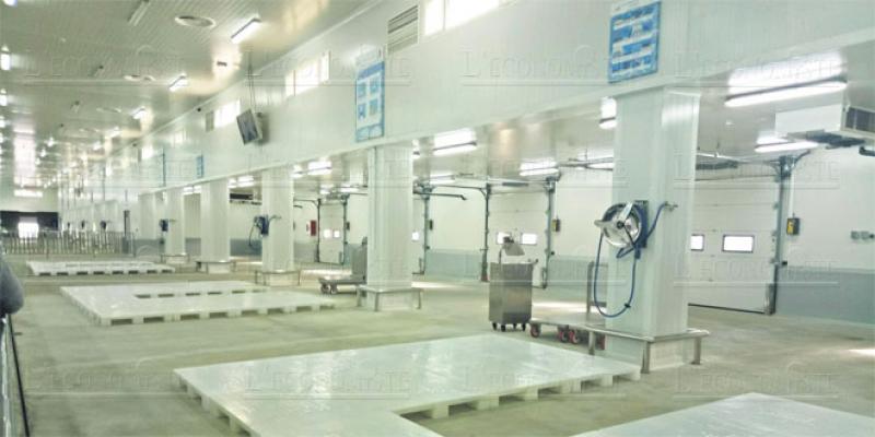 Tamesna: Enfin, le marché de gros au poisson opérationnel